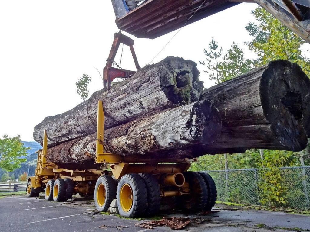 logging equipment financing usa