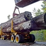 logging equipment financing usa